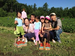 Strawberry Picking at Parlee Farms