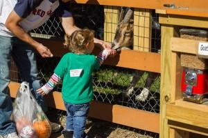 Fall School Trip to Parlee Farms