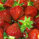 Jewel Strawberries