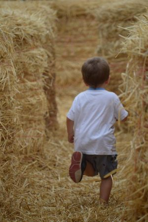 Hay Play Area at Parlee Farms