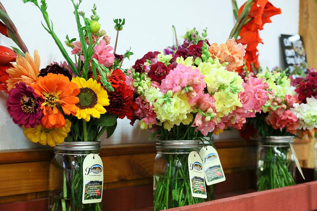 Farm Grown Flowers at Parlee Farms Tyngsboro MA