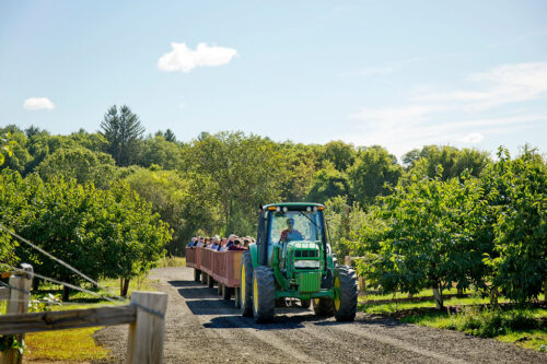 Hayrides to the Apple Orchard at Parlee Farms